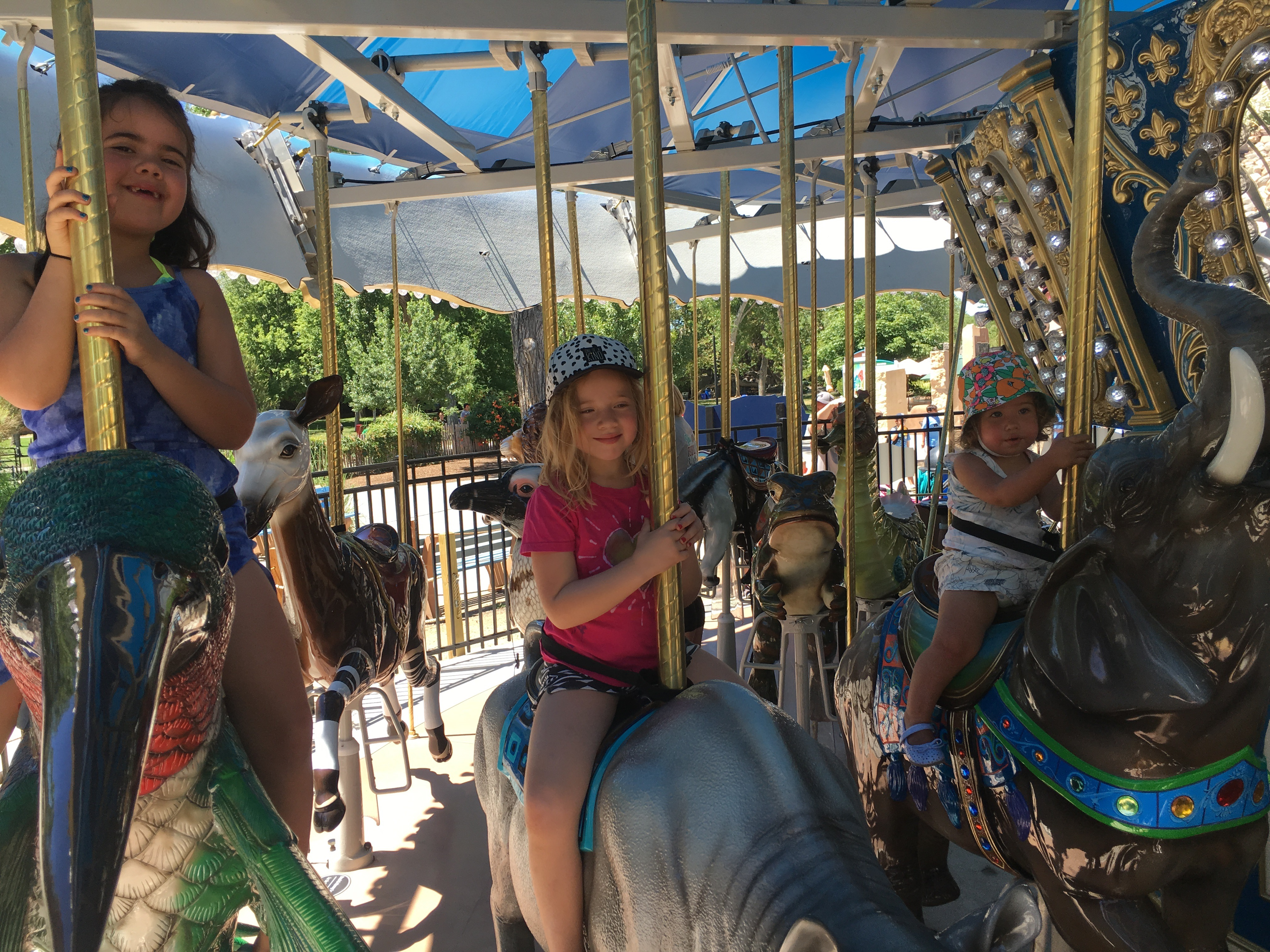 kids' activities at the ABQ BioPark Zoo