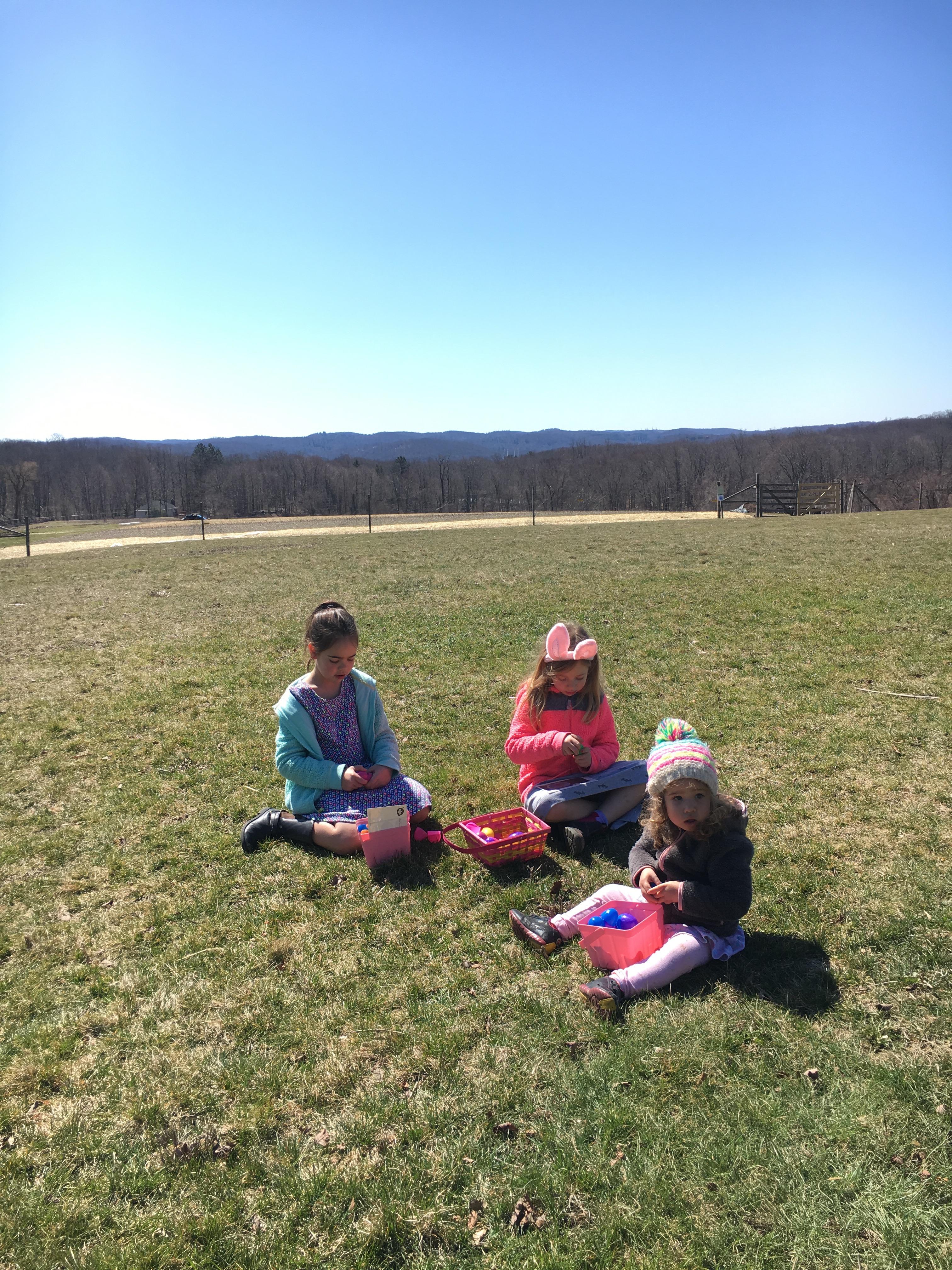 Hilltop Hanover Farm: easter egg hunt