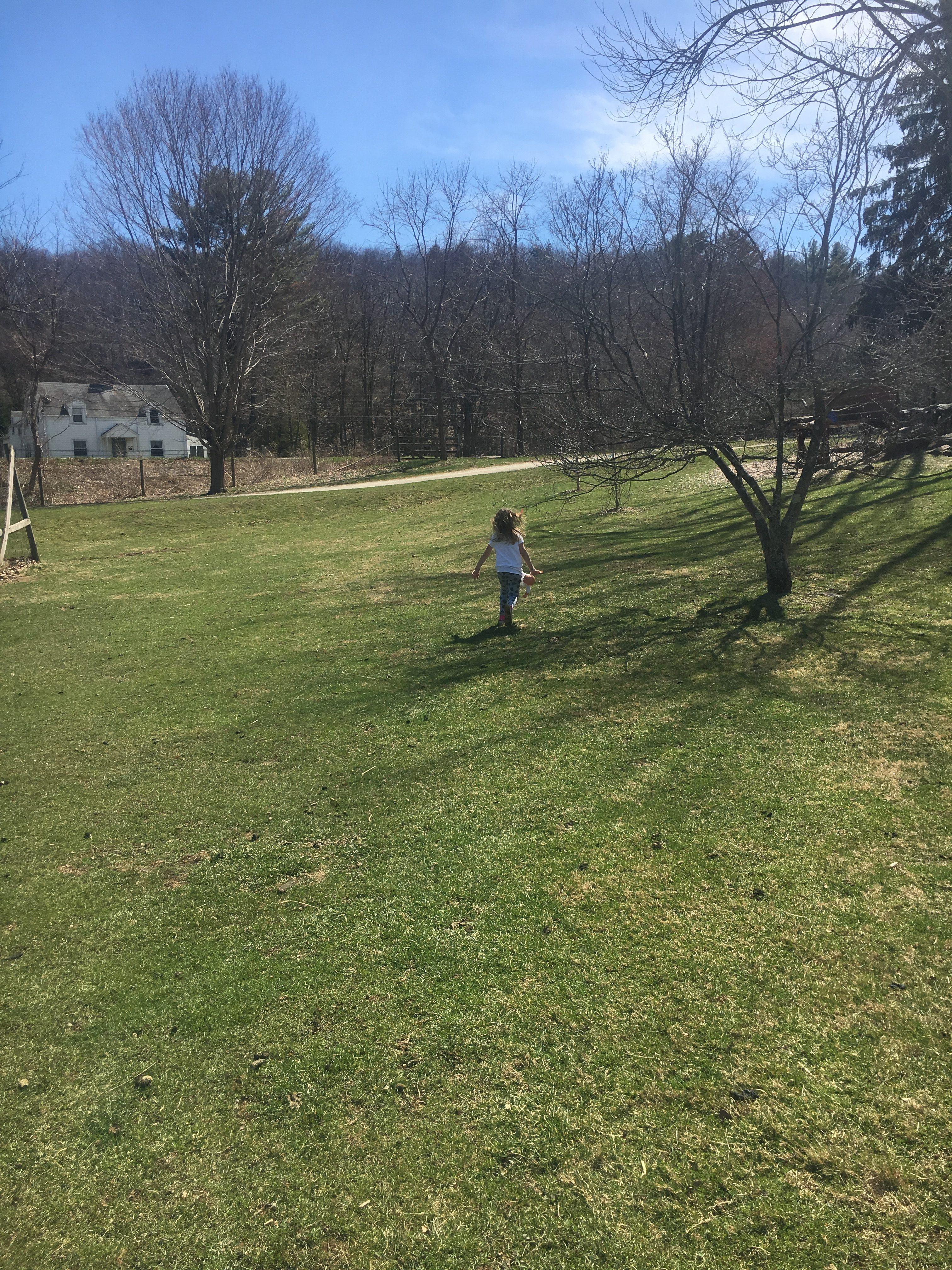 muscoot farm field