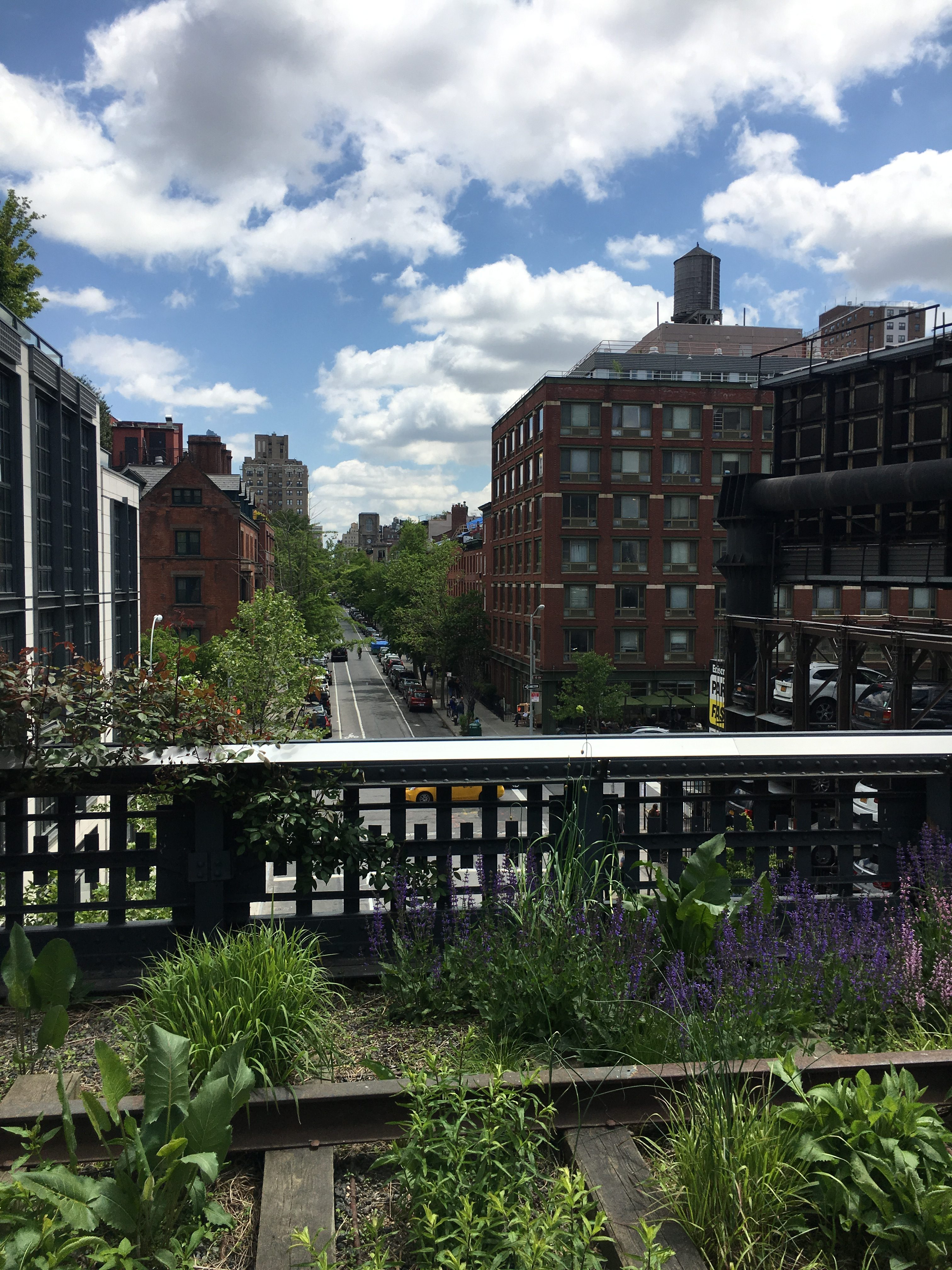 The high line nyc views