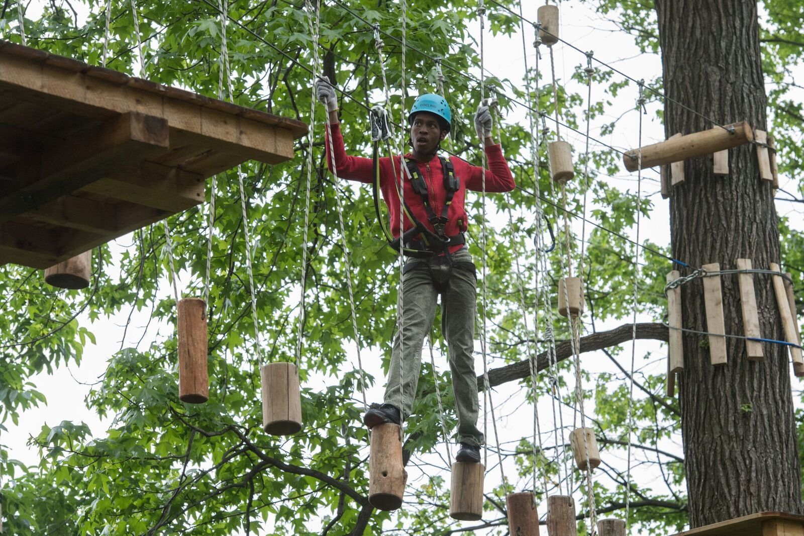 climbing at Bronx Zoo Treetop Adventure