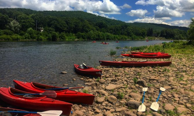 day trips kayaking with sourced adventures