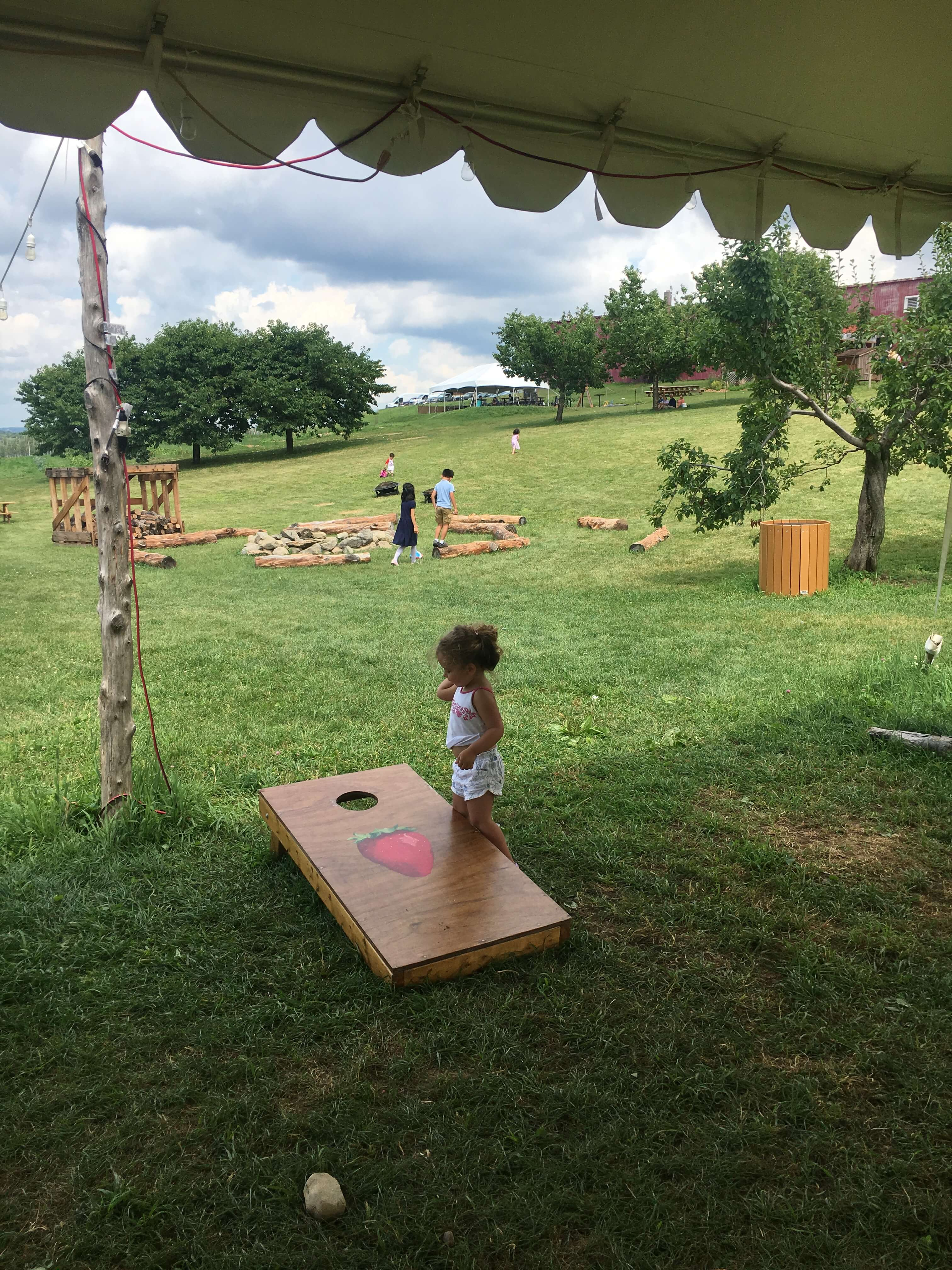 fishkill farms bag toss