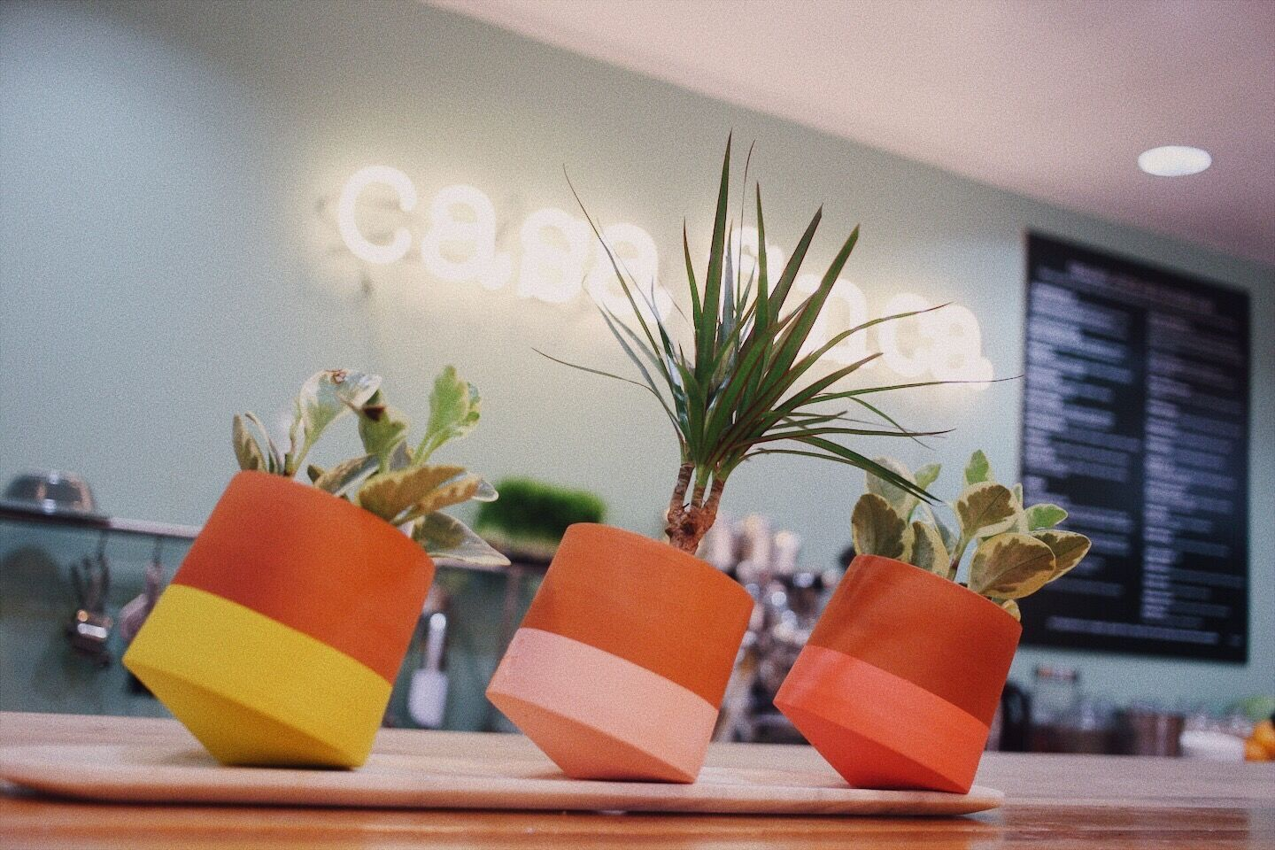 Casa Finca: New Addition to WantedDesign Store at Seaport District