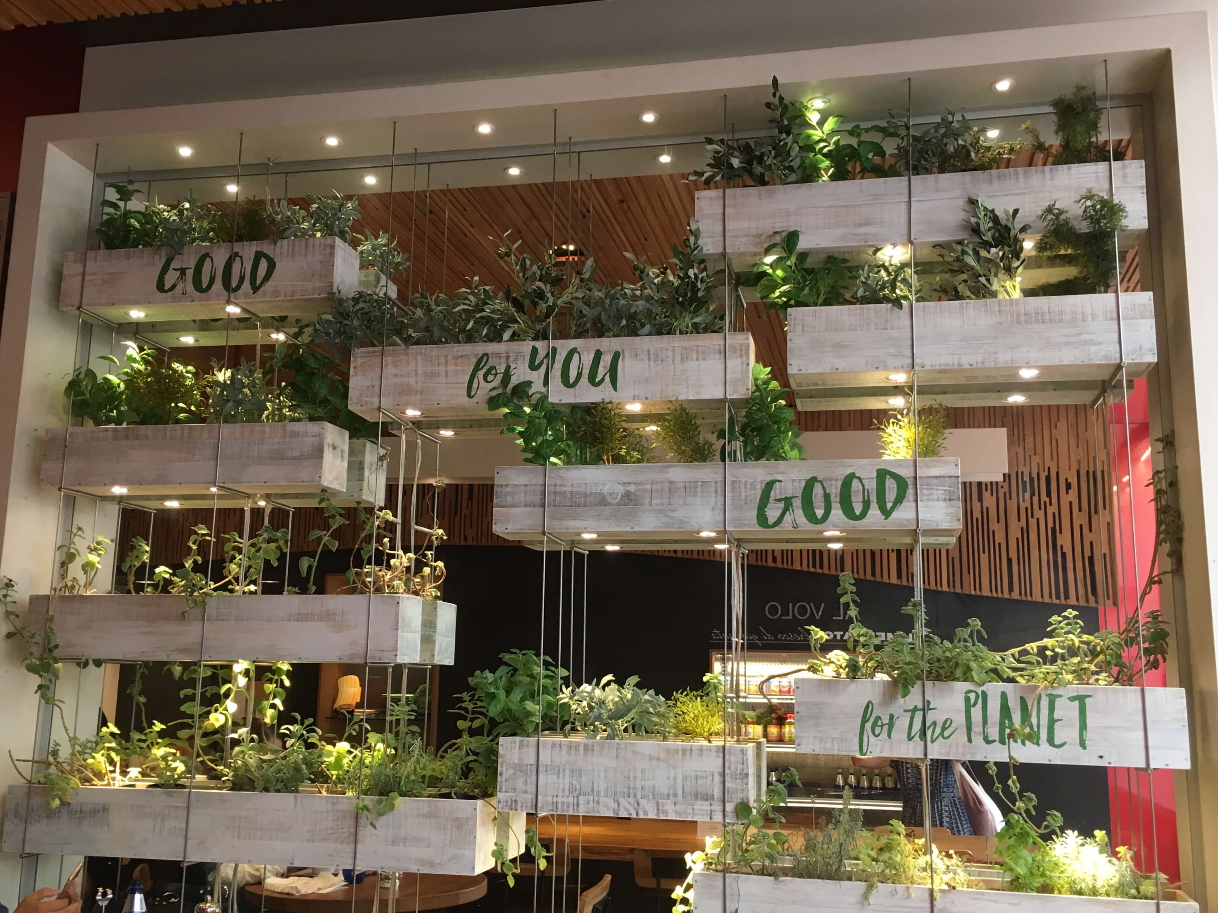 Barilla Restaurants nyc interior