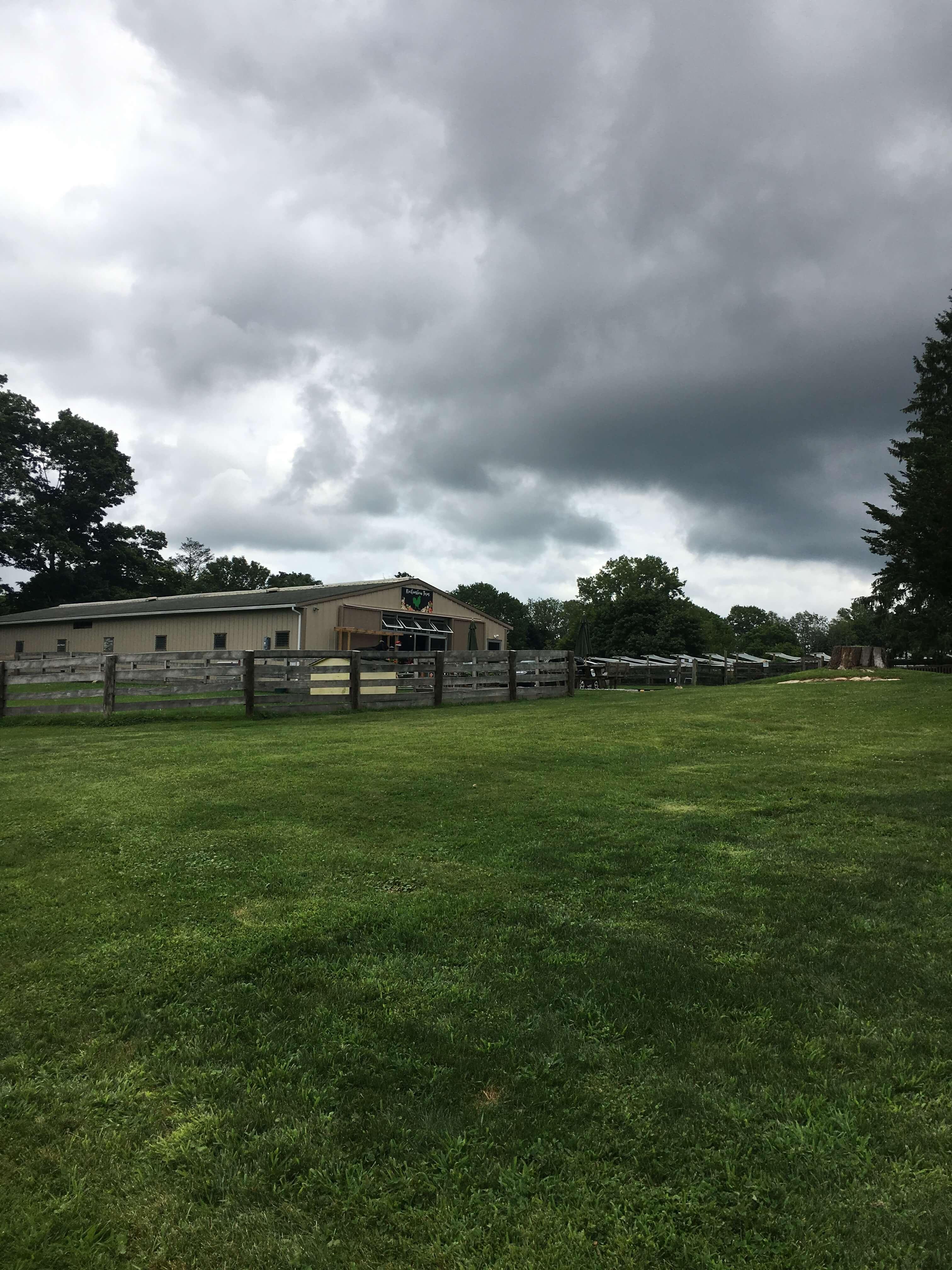 Rochambeau Farm For Kids In Westchester