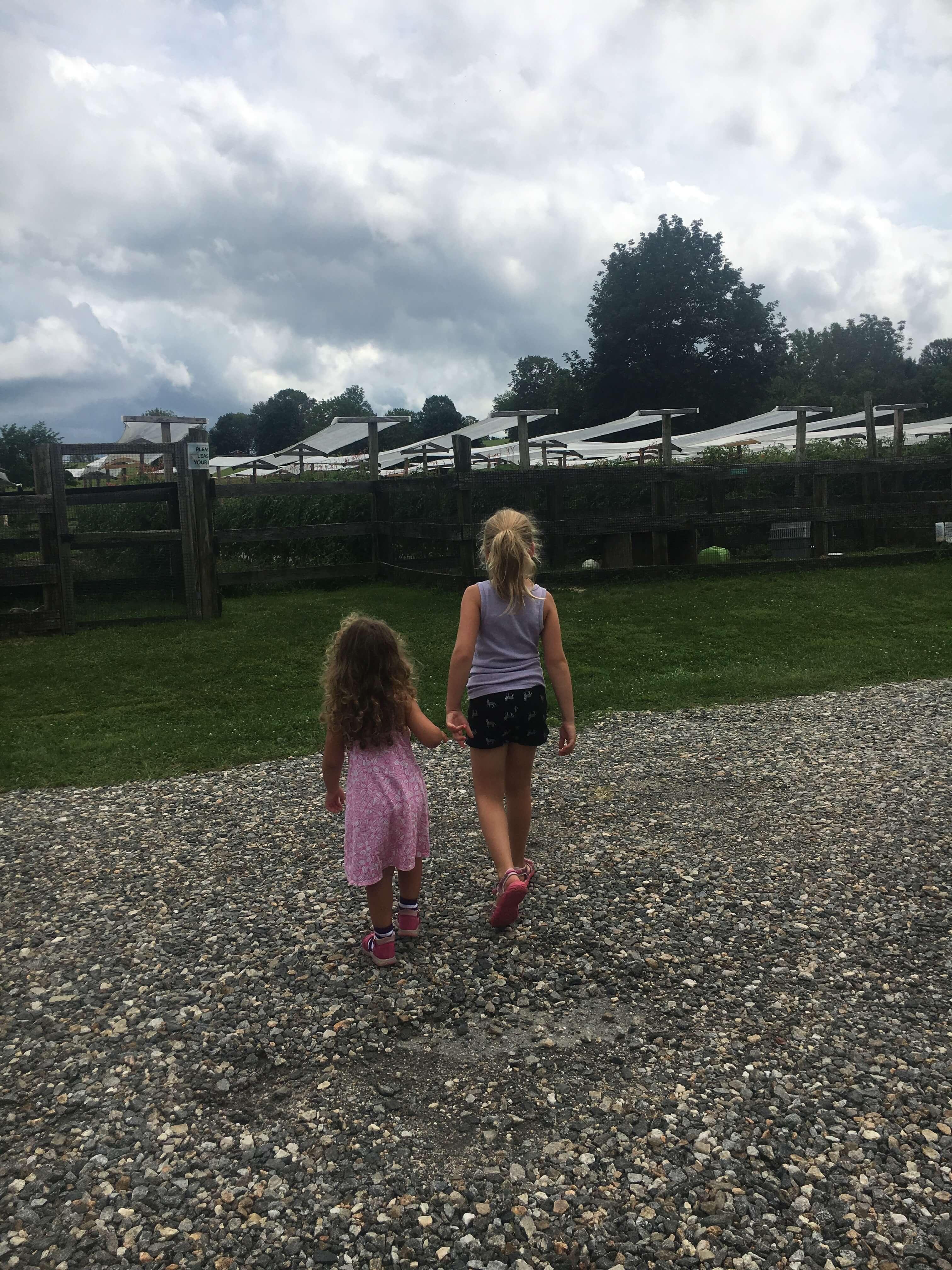 exploring Rochambeau farm