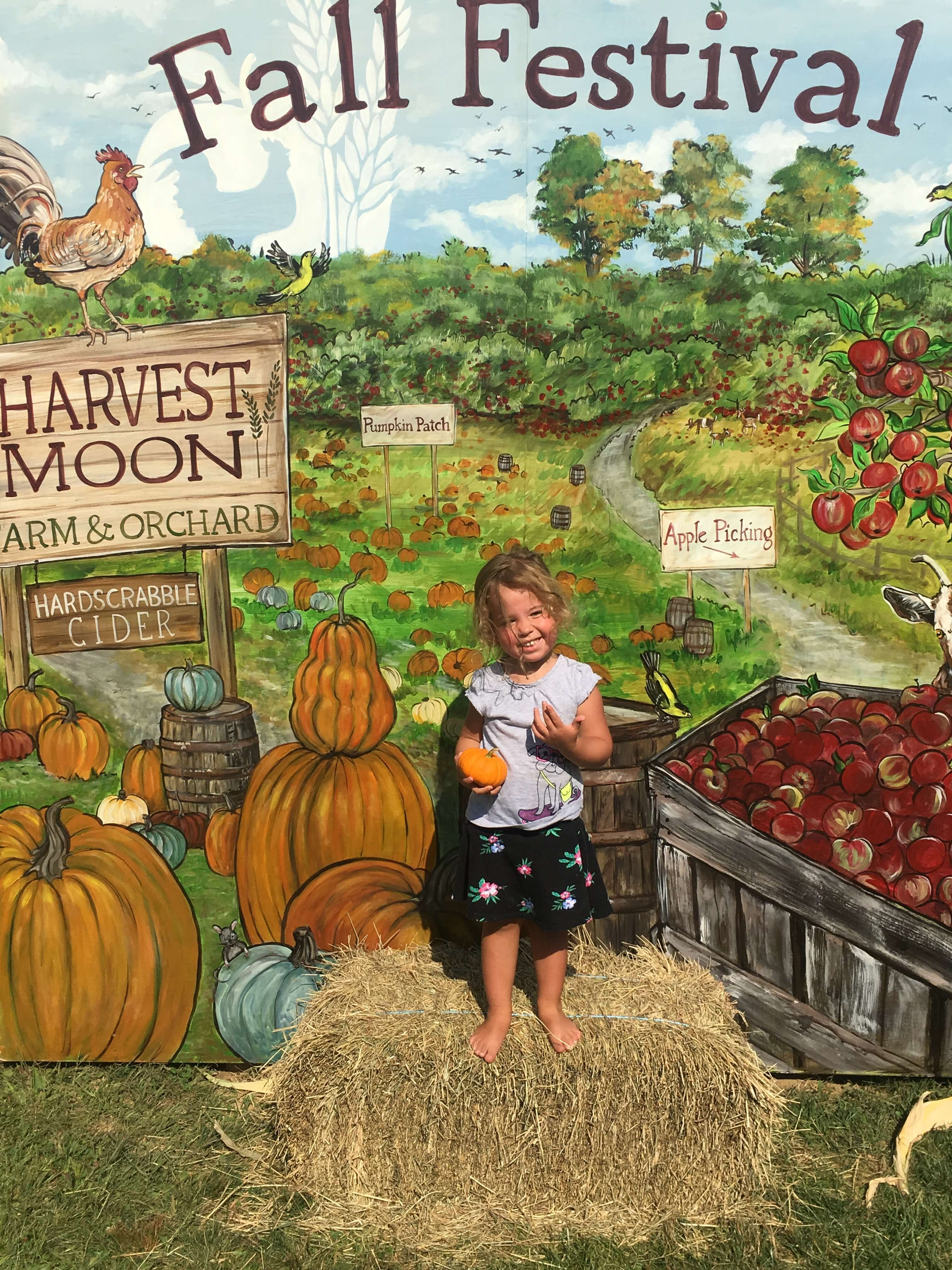 harvest moon apple picking pumpkins