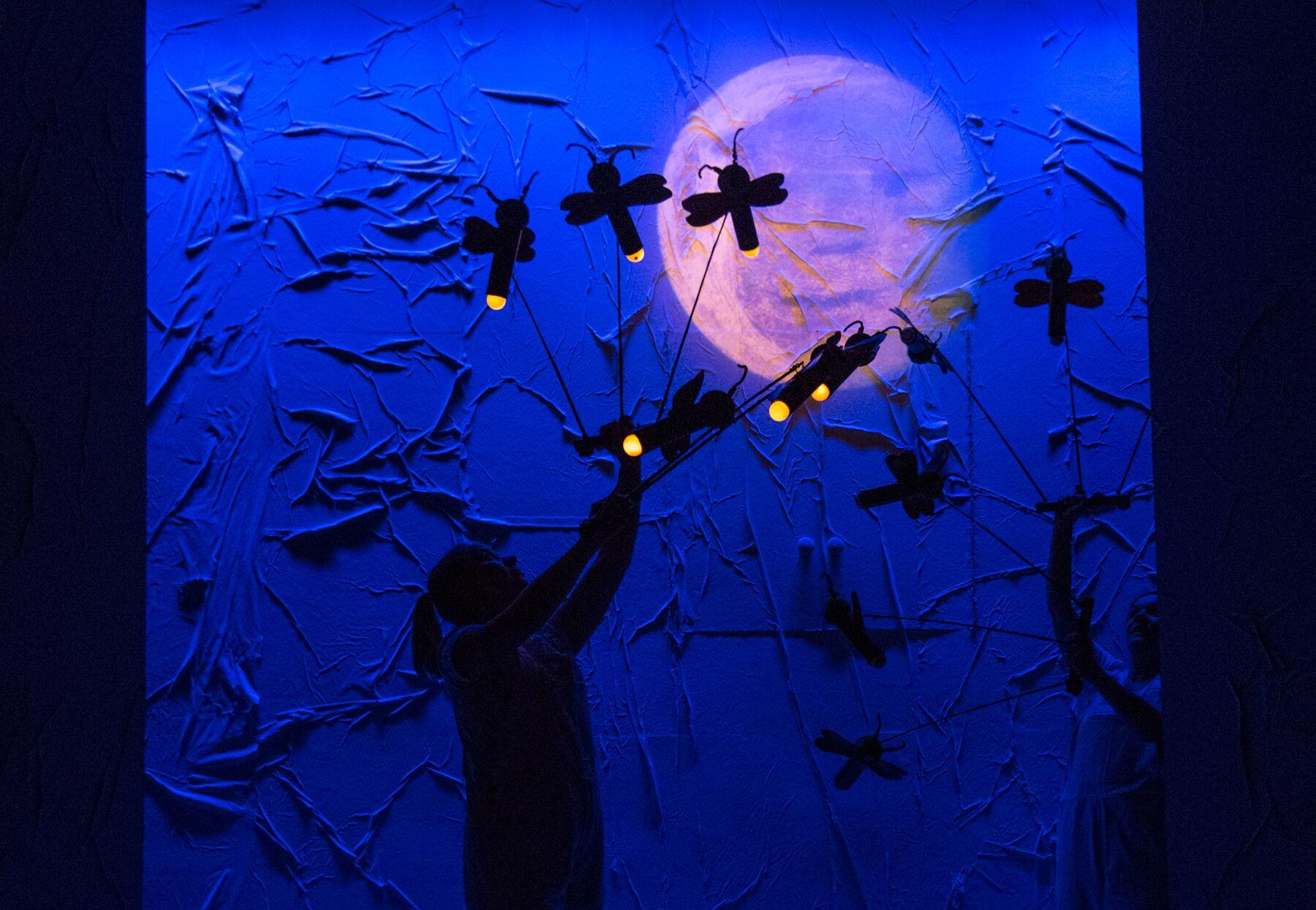 fireflies hungry caterpillar show