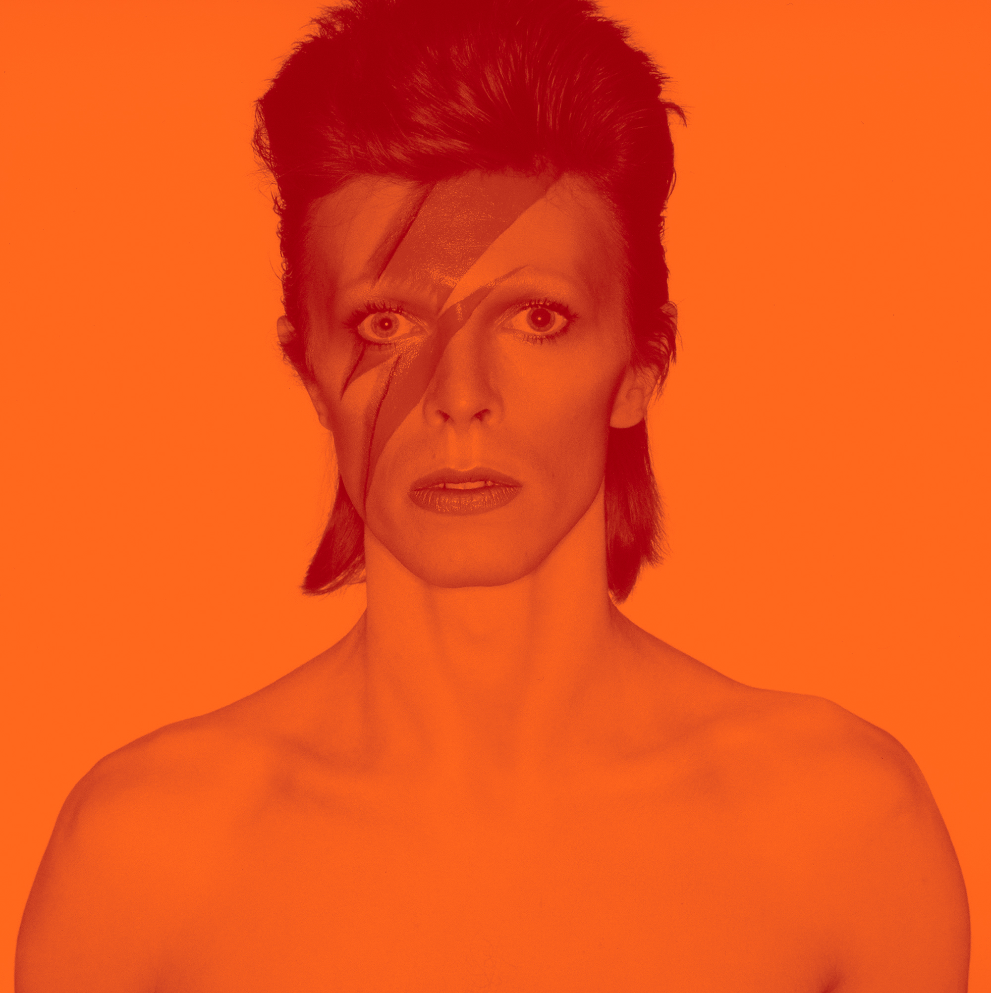 david bowie is celebration at the brooklyn museum