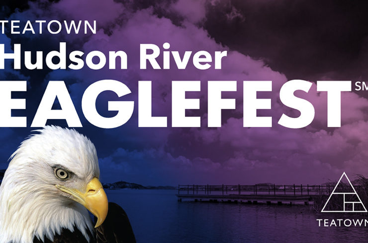 Check out this fun Westchester event with EagleFest, the 14th annual celebration of the bald eagle's return to the Hudson Valley.