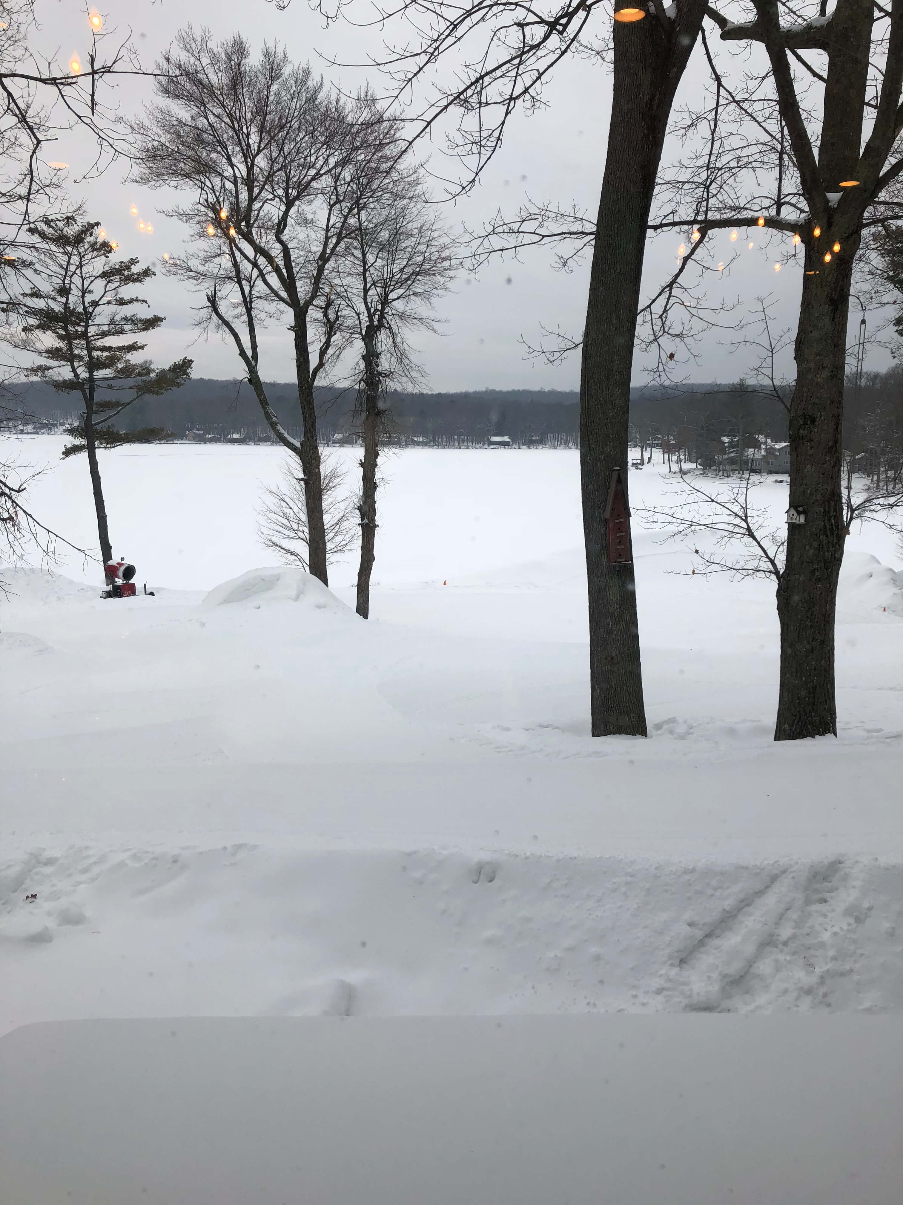 view of lake from woodloch