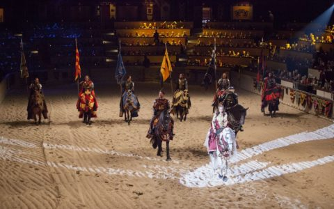 Medieval Times Dinner & Tournament + a Giveaway