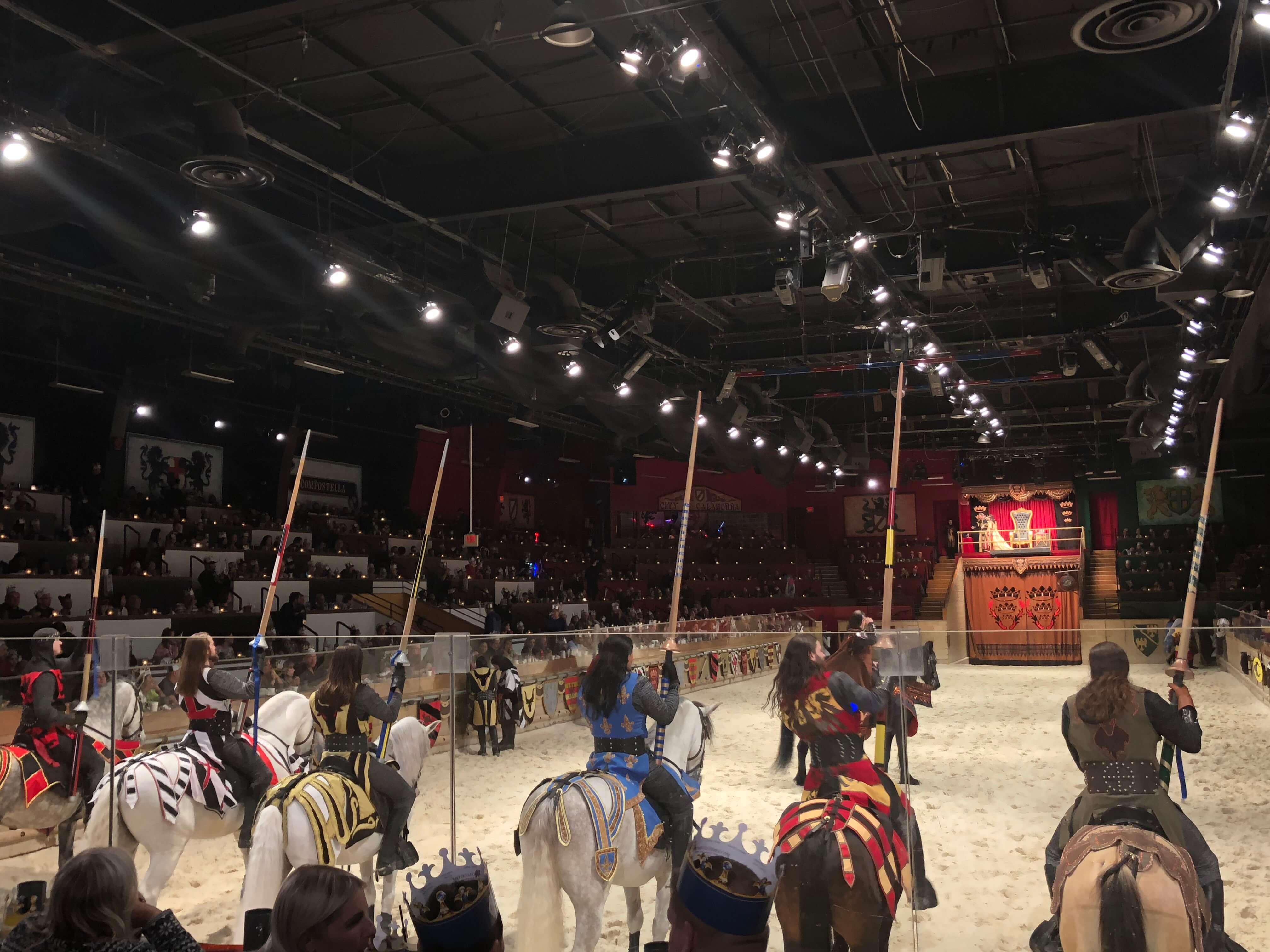 Medieval Times Dinner & Tournament horses