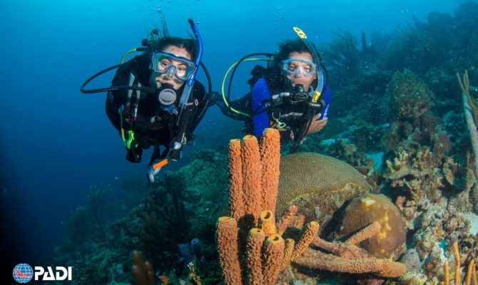 Adventure Awaits with PADI Travel