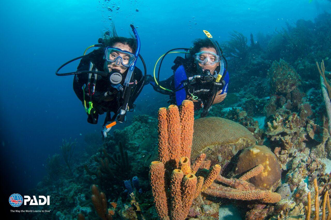 Padi travel scuba diving travel adventures - Dive in travel ...