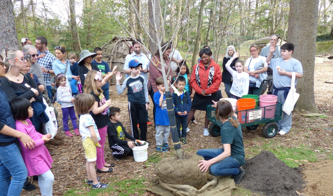 earth day in NYC and westchester at Greenburgh