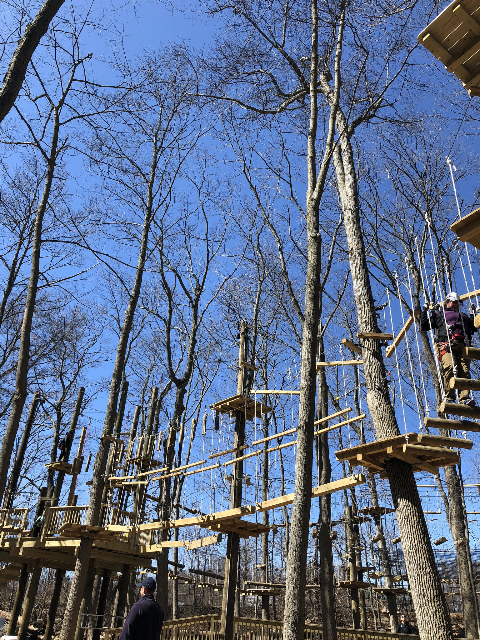 boundless adventures is so fun! check it out in purchase, ny