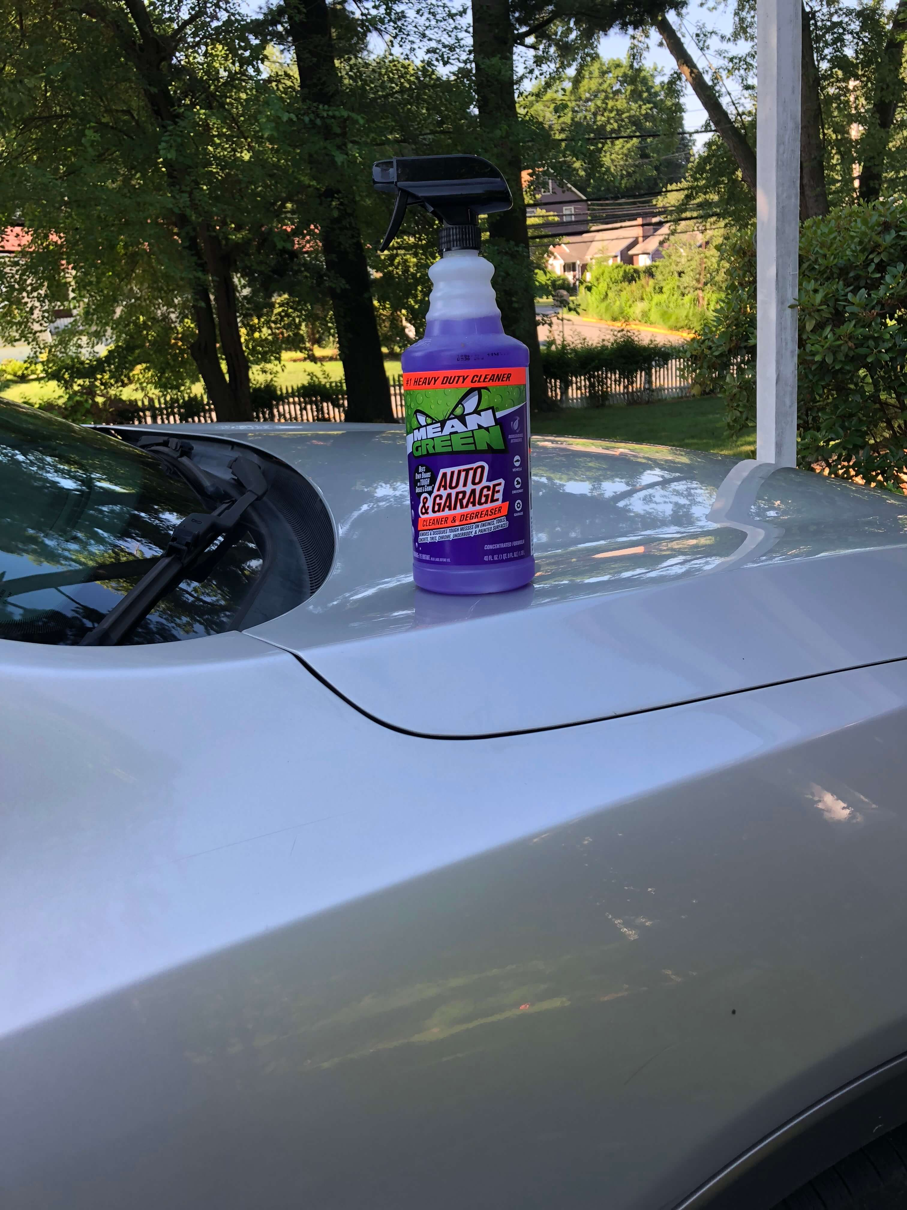Outdoor Cleaning Solutions mean green auto