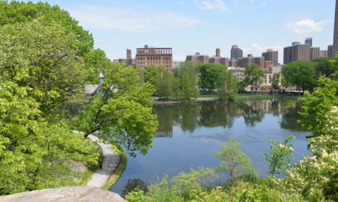 Discovery Walks for Families in Central Park