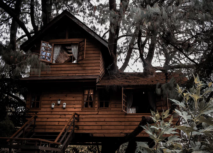 Float to the Clouds with these Amazing 10 Treehouse Hotels