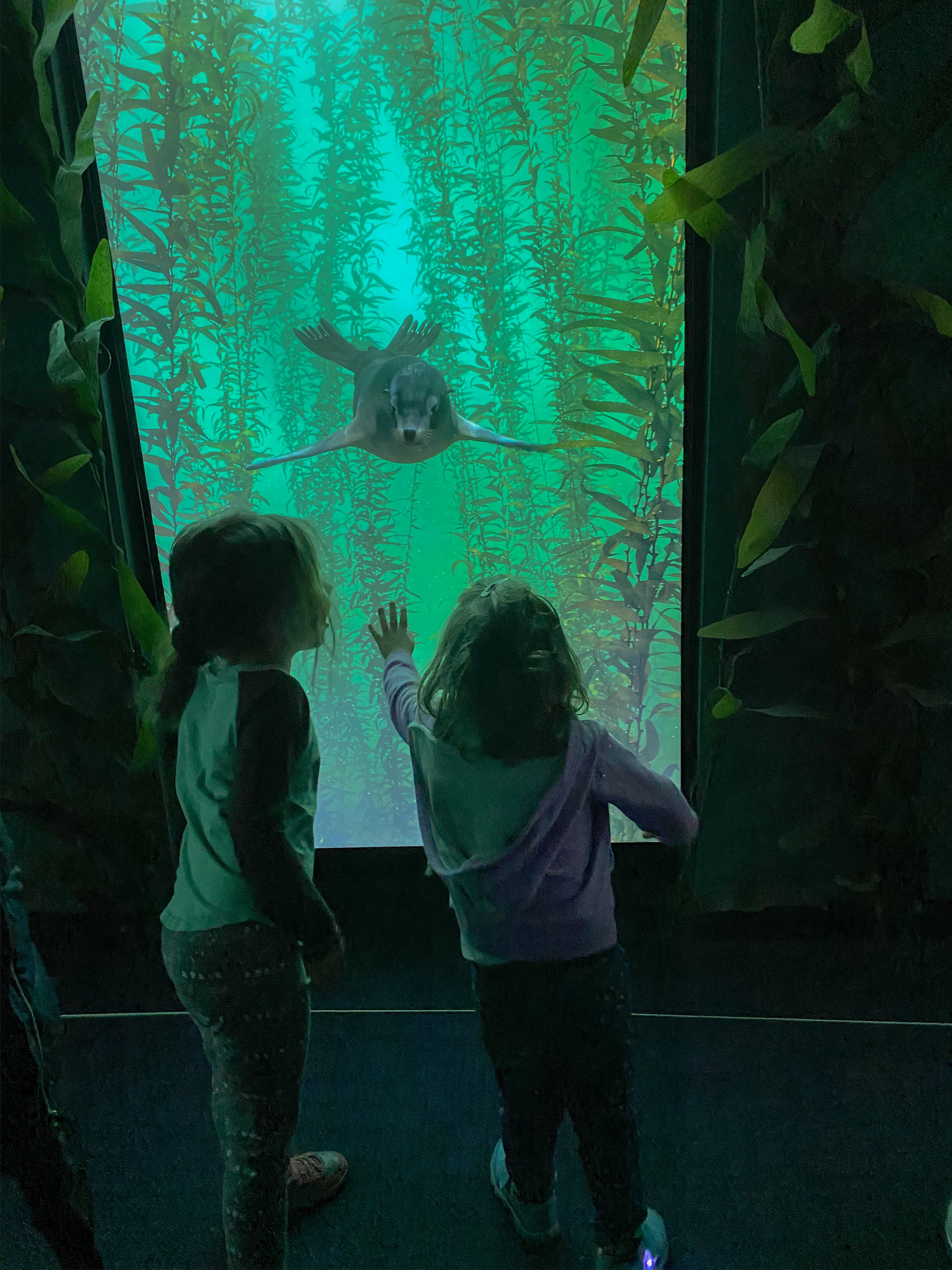 National Geographic Encounter: Ocean Odyssey for Kids